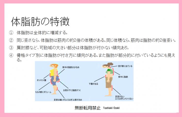 体脂肪の特徴 全体的に痩せるダイエット ボディメイク方法 部位痩せダイエットとボディメーク、骨盤傾き、関節角度、モデル体型のボディメイクトレーニング方法の解説